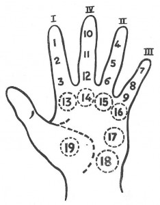 Radiesthetic Hand Analysis with Pendulum