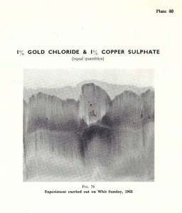 Plate 40, Fig. 76 is the result obtained for Gold chloride and Copper sulphate on Whit Sunday