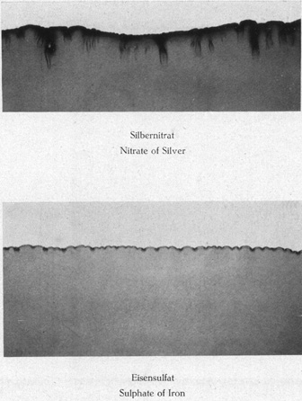 Plate I: Top, Nitrate of Silver. Bottom Sulphate of Iron.